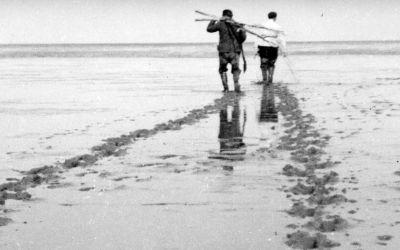 Flevoland in de Tweede Wereldoorlog